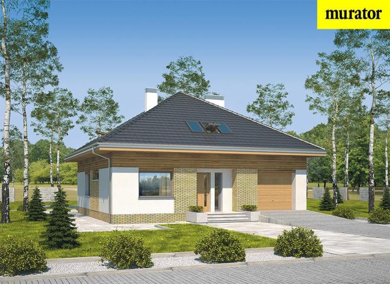 Проекты одноэтажных домов с мансардой, планы, фото, цены. Каталог содержит планировки, планы и чертежи